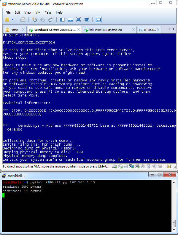 MS12-020 RDP Vulnerability PoC & Analysis - ifconfig dk